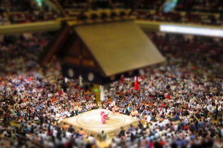 ジオラマ大相撲